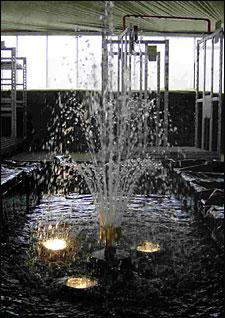 Vijver fontein met verlichting